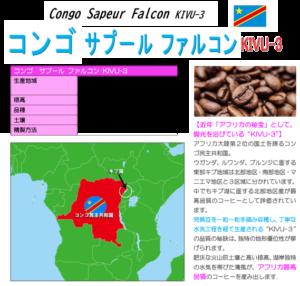 コンゴ サプール ファルコン kivu3 マップ